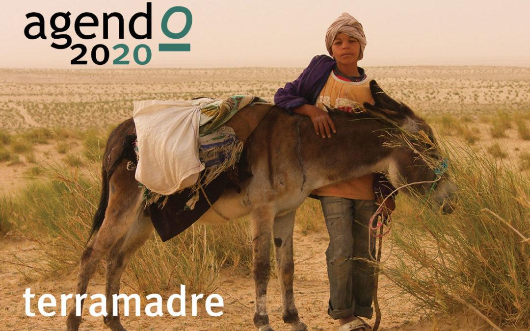 TERRAMADRE Agendo 2020