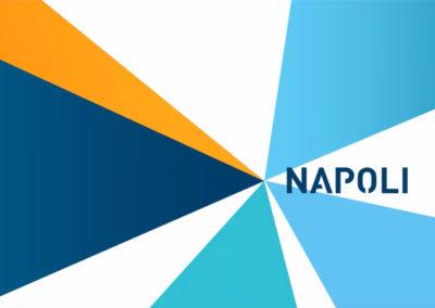 106 DESTINAZIONI DA NAPOLI. VOLALE TUTTE